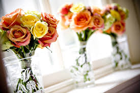 flower wonderful love line nature romantic roses orange forever
