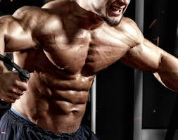 Bodybuilder Bench Press Bench Press Variations Workout Of The Month For Chest