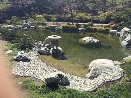 zen garden raking the rocks and contemplation picture of