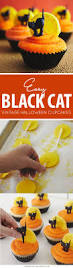 black cat cupcakes black cats cat and black