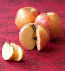 cuisiner la pomme quelle variété de pommes choisir selon la cuisson pommes à cuire