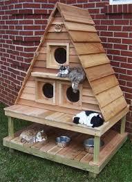 25 best outdoor cat houses ideas on pinterest outdoor cats