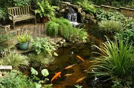 backyard koi pond landscaping ideas how build backyard landscape