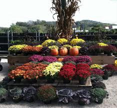 fall display garden center pinterest fall displays garden