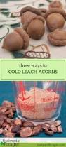 cold leaching acorns three ways backyard forager
