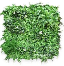 evergreen walls australia u0027s leading supplier of artificial green