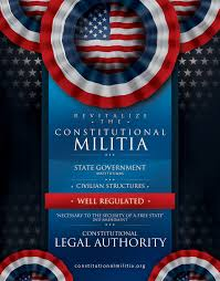 2nd Amendment Flag Print Marketing Campaigns For The Constitutional Militia
