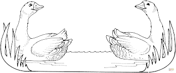 twin geese coloring page free printable coloring pages