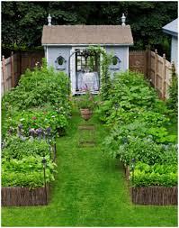 backyards compact backyard garden ideas small landscaping photo