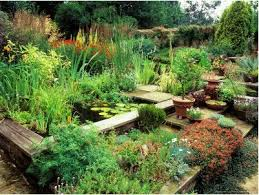 59 best container gardening images on pinterest landscaping