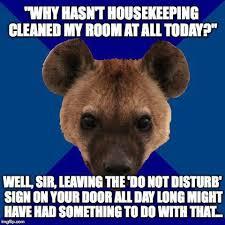 Housekeeping Meme - 30 best work images on pinterest hotel housekeeping hotel humor