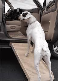 top 15 best portable dog car ramps 2018 reviews u2022 vbestreviews