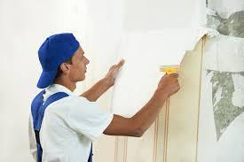 a painter i am a painter what business structure should i choose