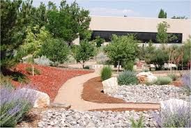 garden ideas landscaping rocks las vegas types of landscaping