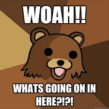 Whats Going On Meme - woah whats going on in here pedobear quickmeme