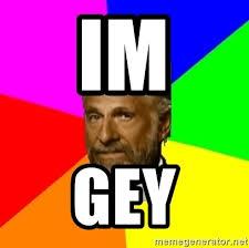 Most Interesting Man In The World Meme Generator - im gey the most interesting man in the world meme generator