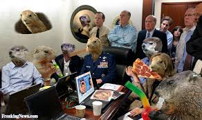 Situation Room Meme - groundhogs running the situation room pictures