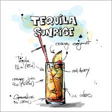 cartoon tequila hand drawn illustration of cocktail tequila sunrise vector