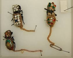 live insect jewelry wikipedia
