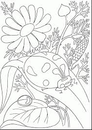preschool coloring pages bugs bugs coloring pages bug for preschool creativemove me inside