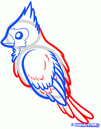 how to draw a red bird red cardinal bird step by step birds