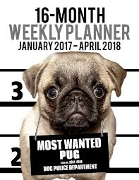 2017 2018 weekly planner most wanted pug daily diary monthly