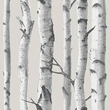 wallpaper trees amazon com