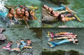 real life mermaid professional mermaids mermaid entertainers