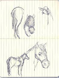 the real chris chua horse sketches at five brooks ranch