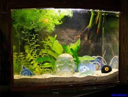 aquarium decoration project android apps on play