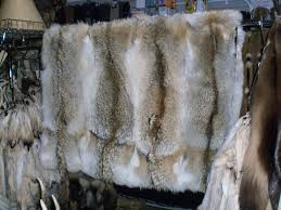 Fox Fur Blanket Pale Western Coyote Blanket Hand Crafted In Usa