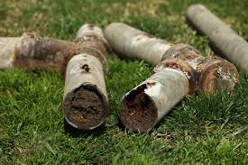 Bathroom Smells Like Sewer After Rain by Blocked Sewer Pipe 4 Signs You Can U0027t Ignore Ben Franklin Plumbing