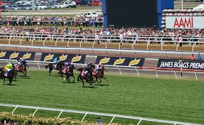 lexus tent melbourne cup 2015 melbourne cup the race that stops a nation should be stopped