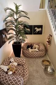 is your pet all set 3w design inc u2013 blog