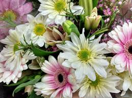 spring flowers bouquet close up picture free photograph photos