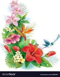 tropical flower arrangements arrangement from tropical flowers royalty free vector image