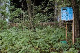 what it u0027s like to spend 32 hours in the chernobyl exclusion zone