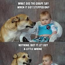 Dog Jokes Meme - dog joke meme
