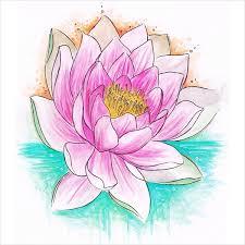 19 flower drawings free u0026 premium templates