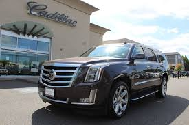 used cadillac for sale larson says yes