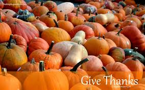 thanksgiving pumpkins desktop background desktop inspirations