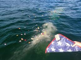 scattering ashes at sea ashes florida cremation ash scattering and burial at sea