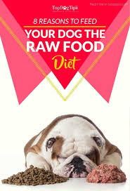 31 best raw barf diet for dogs images on pinterest your dog dog