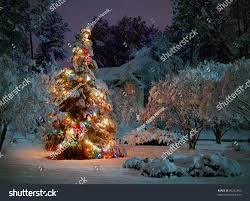 snow covered outdoor christmas tree multicolored stock photo