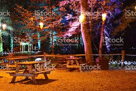 forest picnic area at night illuminated stock photo 613666020 istock