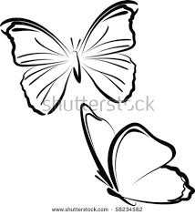 drawing butterfly stock images royalty free images u0026 vectors