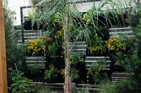 create a living wall for those tight garden spaces u2014 j peterson