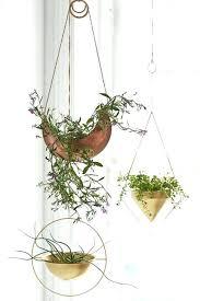 best plant for desk decorative plants for office plants for the office decorative