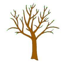 brown tree brown tree without leaves clipart clip library
