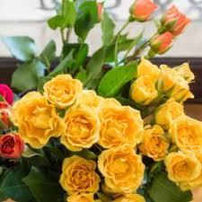 denver florists ed florist 102 photos 48 reviews florists 6101 e